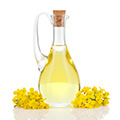 image of canola oil